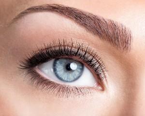 eyebrowssmall_640x480